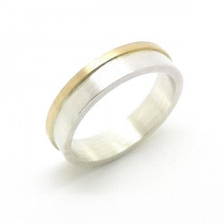 Silver gold ring