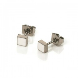 Titanium ceramic earrings